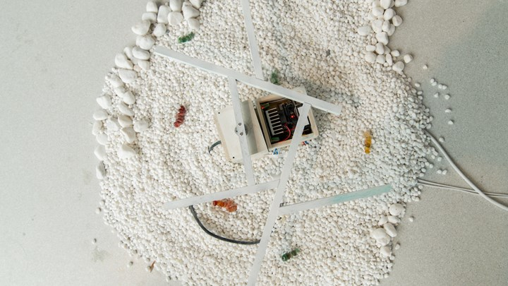 Cheuk Wing Nam, The World of Microcosm (Series of Necropolis) (detail) (2017). Sound installation. Dimensions variable. Courtesy the artist and K11 Art Foundation.