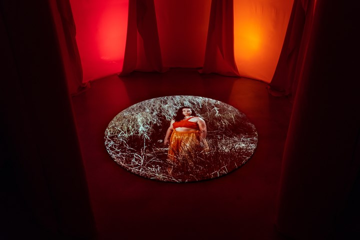 Hannah Brontë, Heala (2018). Mixed media installation with single-channel digital video, colour, audio. Exhibition view: The National 2019: New Australian Art, Museum of Contemporary Art Australia, Sydney (29 March–21 July 2019). © Hannah Brontë. Courtesy the artist and Museum of Contemporary Art Australia. Photo: Jacquie Manning.