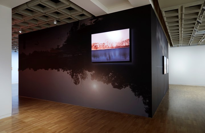 Peta Clancy, 'Undercurrent' (2018–2019). Inkjet pigment prints, photomurals. 725 x 350 cm and 707 x 350 cm; 1 framed print 150 x 106.19 cm; 2 framed prints 130 x 92.14 cm. Exhibition view: The National 2019: New Australian Art, Art Gallery of New South Wales, Sydney (29 March–21 July 2019). © Peta Clancy. Courtesy the artist. Photo: AGNSW, Diana Panuccio.