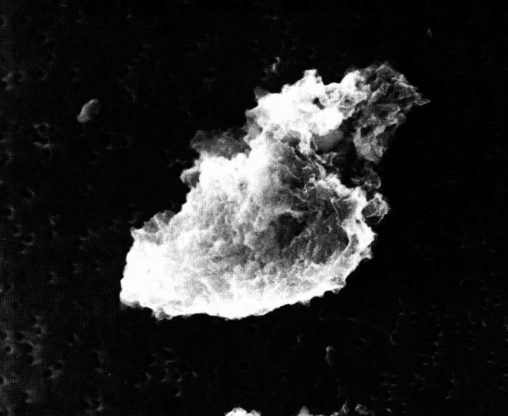 A cloud-like formation takes up the centre of the image, its surface white against the black background.