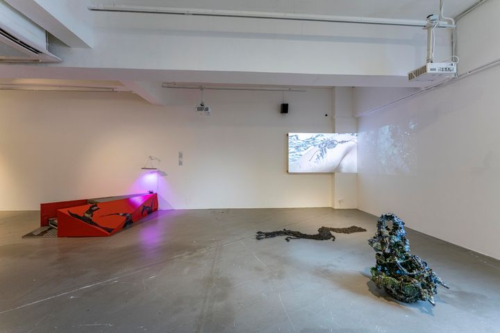 A series of low-lying installations in the exhibition space are accompanied by a projection on the wall.