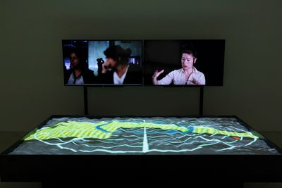Two screens sit side by side, the one to the right shows the artist Hito Steyerl raising her hands as if explaining something. A table below the screens shows a map that has ripples in it and is lit up.
