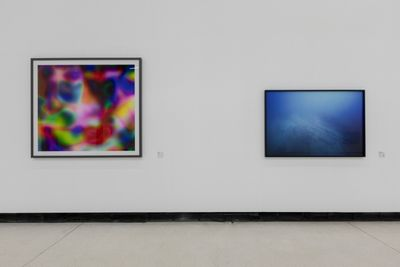 Two blurred images are framed in black and hang on the gallery. The image to the left features pools of bright colour. The image to the right shows a hazy image of what appears to be the ocean floor.