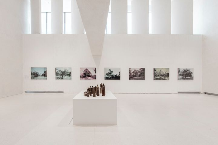 Seven photographs in varying hues of blue, purple, and yellow feature trees and outdoors landscapes, hanging on a wall in the background. In the foreground, a pedestal sits beneath a series of metallic bottles placed at varying heights.