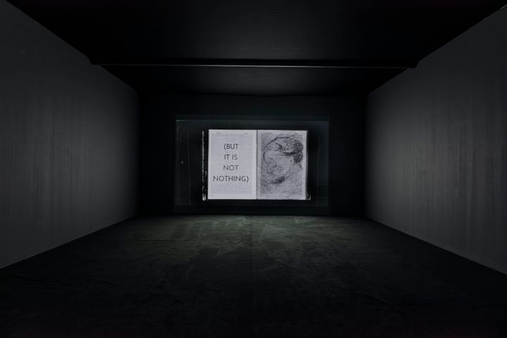 A video installation by William Kentridge presents a book, with the left-hand page covered in words in capital letters and in parentheses that read 'But It Is Not Nothing', while the right-hand page shows the profile of an elderly woman with their face lowered.