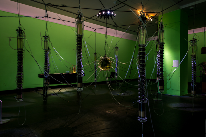 Gilberto Esparza, Autophotosynthetic Plants (Phytonucleum electricus cella) (2013–2014). Polycarbonate, stainless steel, electronic circuits, wood, silicone, graphite, silica, sand, activated carbon, acrylic. 200 x 500 x 500 cm. Exhibition view: As We May Think: Feedforward, 6th Guangzhou Triennial, Guangdong Museum of Art, Guangzhou (21 December 2018–10 March 2019). Courtesy Guangdong Museum of Art.