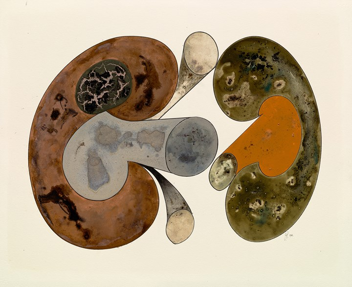 Irving Penn, Aging Mushrooms, New York (1988). Platinum palladium print, ink, watercolour and dry pigment on paper mounted to aluminium. 62.9 x 51.1 cm. Courtesy Pace Gallery. © The Irving Penn Foundation.