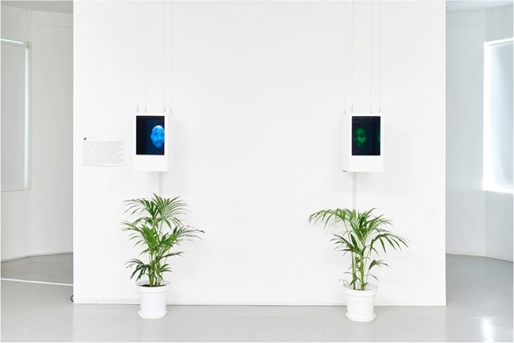 Bogosi Sekhukhuni, Consciousness Engine 2: absentfatherbot (2014). Two-channel video installation. Courtesy the artist.
