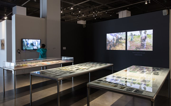 Raphaël Grisey and Bouba Touré, Sowing Somankidi Coura, A Generative Archive (2015–ongoing). Exhibiton view: Starting from the Desert: Ecologies on the Edge, 2nd Yinchuan Biennale, MOCA Yinchuan (9 June–30 September 2018). Courtesy MOCA Yinchuan.