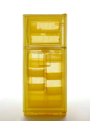 Specimen Series: Refrigerator, Unit 2, 348 West 22nd Street, New York, NY 10011, USA by Do Ho Suh contemporary artwork