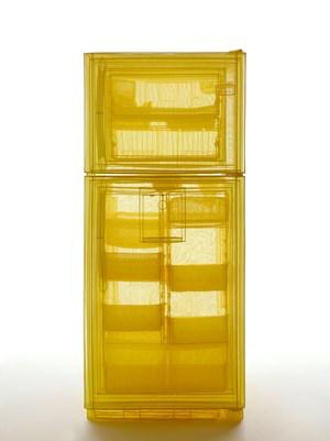 Specimen Series: Refrigerator, Unit 2, 348 West 22nd Street, New York, NY 10011, USA by Do Ho Suh contemporary artwork installation