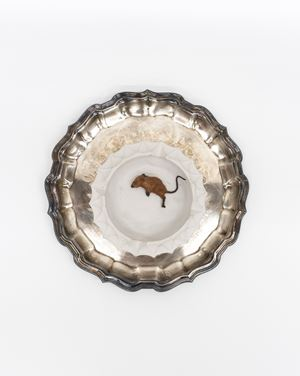 Little Mouse Tray by Liz Magor contemporary artwork