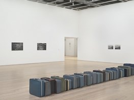 Zoe Leonard Transcends Time at the Whitney Museum