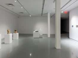 "Michael Joo<br><em>Sensory Meridian</em><br><span class=""oc-gallery"">Kavi Gupta</span>"