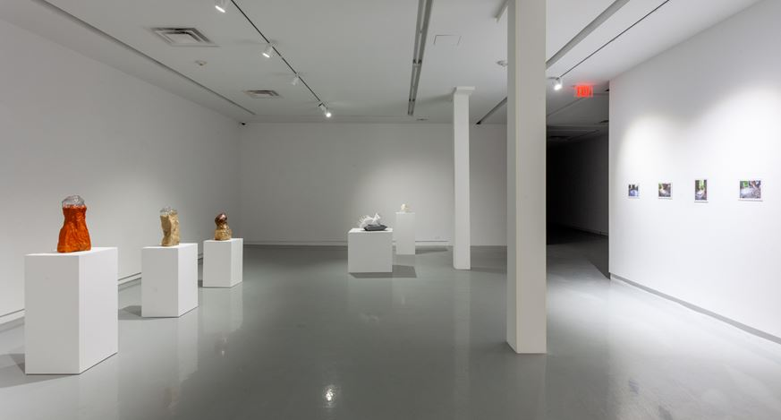Exhibition view: Michael Joo,Sensory Meridian, Kavi Gupta,Elizabeth St, Chicago (14 January–13 March 2021). Courtesy Kavi Gupta.