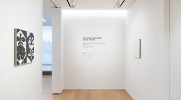 Contemporary art exhibition, Gregor Hildebrandt, Behind My Back, In Front of My Eyes at Perrotin, Hong Kong, SAR, China