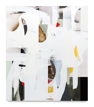Composite 27 (slack-jaw) by Kevin Appel contemporary artwork