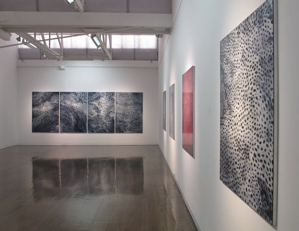 Exhibition view: Catherine Woo, Vibrant Matter, Arc One Gallery, Melbourne (20 April–22 May 2021). Courtesy Arc One Gallery.