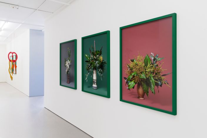 Exhibition view: Ann Shelton, Tracy Keith, Essi Airisniemi, Her thick old skin, Bartley & Company Art, Wellington (22 April–15 May 2021). Courtesy Bartley & Company Art.