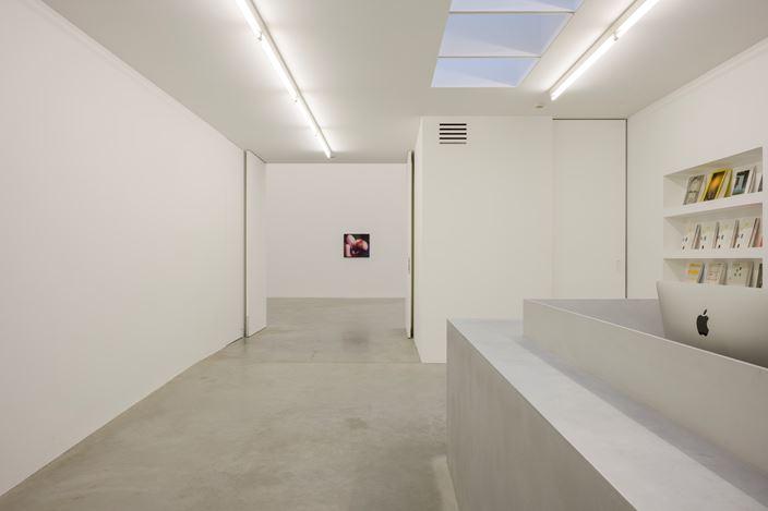 Exhibition view: Johannes Kahrs, Hell I Am, Zeno X Gallery, Antwerp (31 October–22 December 2018).Courtesy Zeno X Gallery.