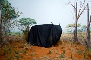 In the Days of a Dark Safari by Kiluanji Kia Henda contemporary artwork