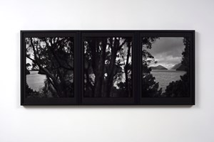 15.5.1995. Views from Astronomers Point. Tamatea Dusky Sound. After Russell Duncan by Mark Adams contemporary artwork