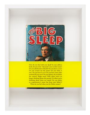Serie Noire (The Big Sleep) by Sophie Calle contemporary artwork