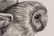 Inseparable (Barn Owl) by Patricia Piccinini contemporary artwork 8