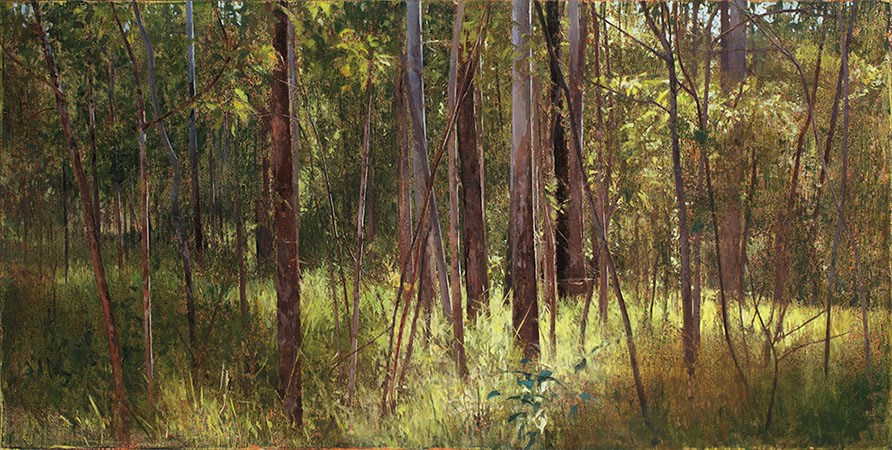 A. J. Taylor,                                                                  Forest Edge, Early Light (2017). Oil on board. 91.5 x 183 cm. Courtesy Martin Browne Contemporary.