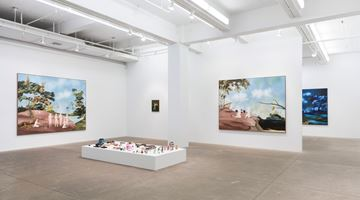 Contemporary art exhibition, Sanam Khatibi, An hour before the Devil fell at P·P·O·W Gallery, New York