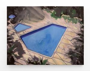 Bird's Eye View by Kate Gottgens contemporary artwork