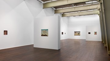 Contemporary art exhibition, Anj Smith, If Not, Winter at Hauser & Wirth, Zurich