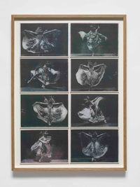 Notes on Architecture: Annabelle Butterfly dances to Ron Hardy @ the Box by Richard Forster contemporary artwork works on paper