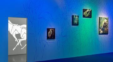 Contemporary art exhibition, Avish Khebrehzadeh, I Sing with my Tongue Silent at M77, Milan