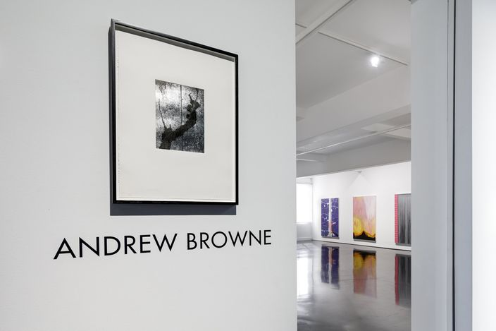 Exhibition view: Andrew Browne, Shoegazer 2.0, Tolarno Galleries, Melbourne (22 May–19 June 2021). Courtesy Tolarno Galleries. Photo: Andrew Curtis.