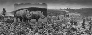 'Wasteland with Rhinos', Inherit The Dust, Kenya by Nick Brandt contemporary artwork