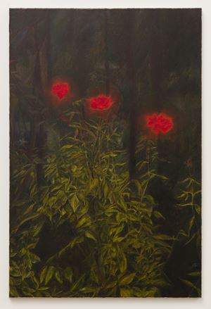 Roselight by Srijon Chowdhury contemporary artwork