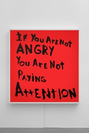 If You Are Not Angry Then You Are Not Paying Attention by Sam Durant contemporary artwork