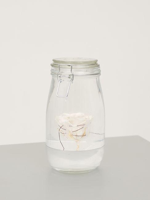 Jar With Rose II by Edith Dekyndt contemporary artwork