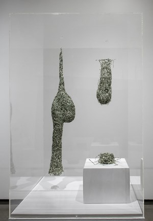 Nests from Tender by Fiona Hall contemporary artwork