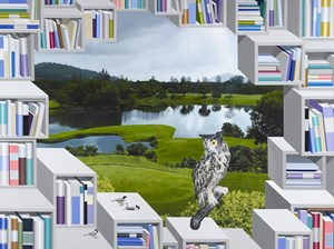 Library- Golf Course by Hong Kyong Tack contemporary artwork