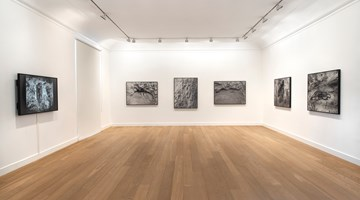 Contemporary art exhibition, Ana Mendieta, Cuba & Miami 1981–83 at Galerie Lelong & Co. Paris, 13 Rue de Téhéran, Paris