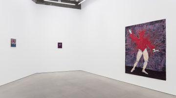 Contemporary art exhibition, Felipe Baeza, Unruly Suspension at Maureen Paley, London