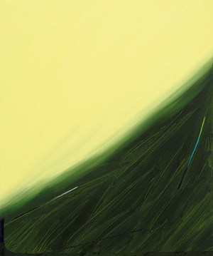 Sour Refractions by Min Ha Park contemporary artwork