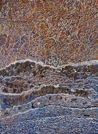 The Little Swamp at Worbody Point by Mavis Ngallametta contemporary artwork painting
