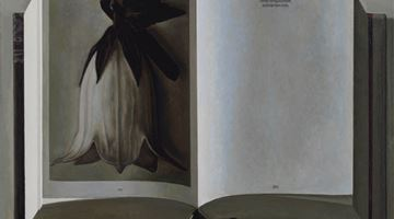 Contemporary art exhibition, Liu Ye, The Book and the Flower at David Zwirner, New York