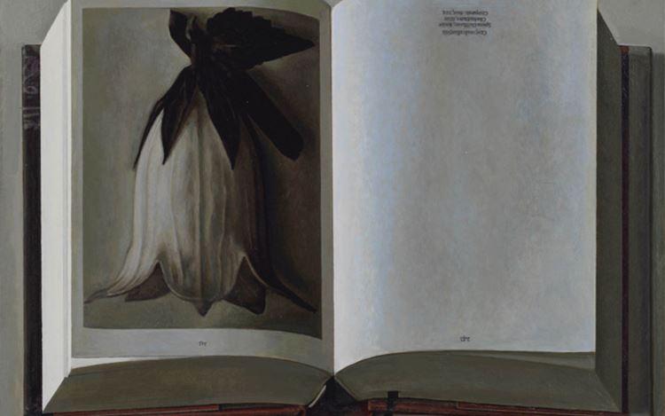 Liu Ye,Book Painting No. 21 (Karl Blossfeldt, The Complete Published Work, Taschen GMBH, 2017) (2018) (detail). Courtesy David Zwirner.