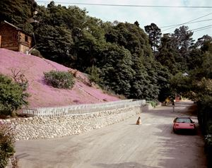 Rustic Canyon, Santa Monica, California, May 1979 by Joel Sternfeld contemporary artwork