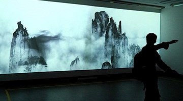 Contemporary art exhibition, Jin Jiangbo, Rules of Nature at Starkwhite, Auckland, New Zealand