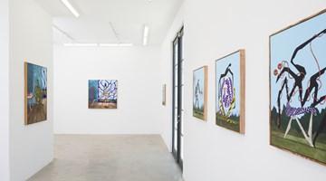 Contemporary art exhibition, Alejandro Cardenas, Calusa Garden at AE2, Los Angeles